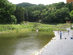 石岡市での釣り